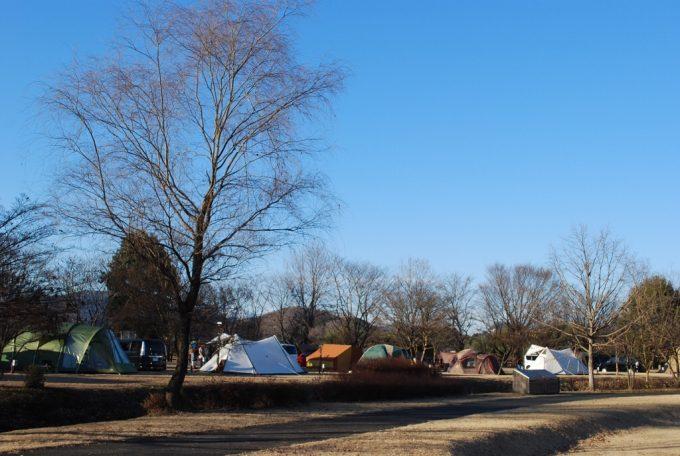 キャンプ 公園 オート 出会い 森 場 の 総合
